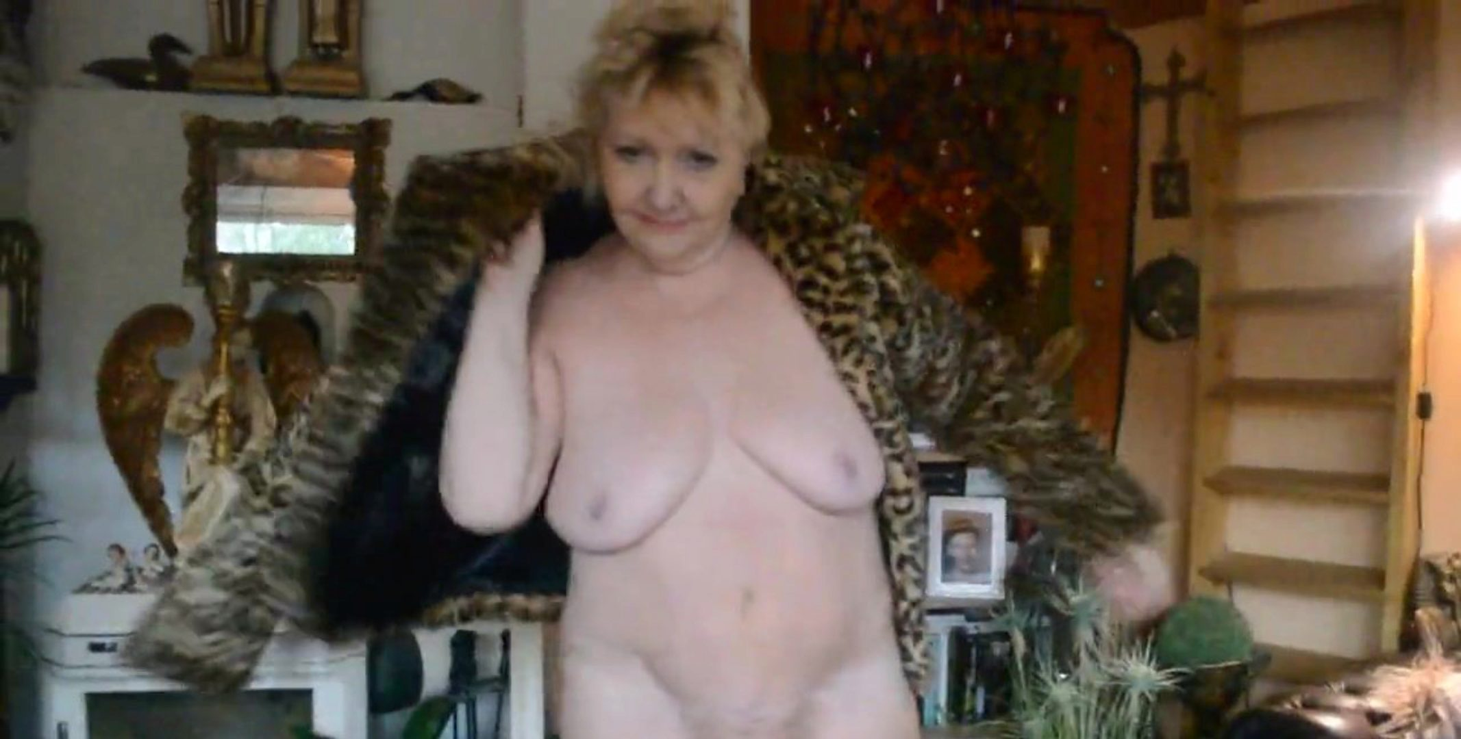 My Free Live Web Cams